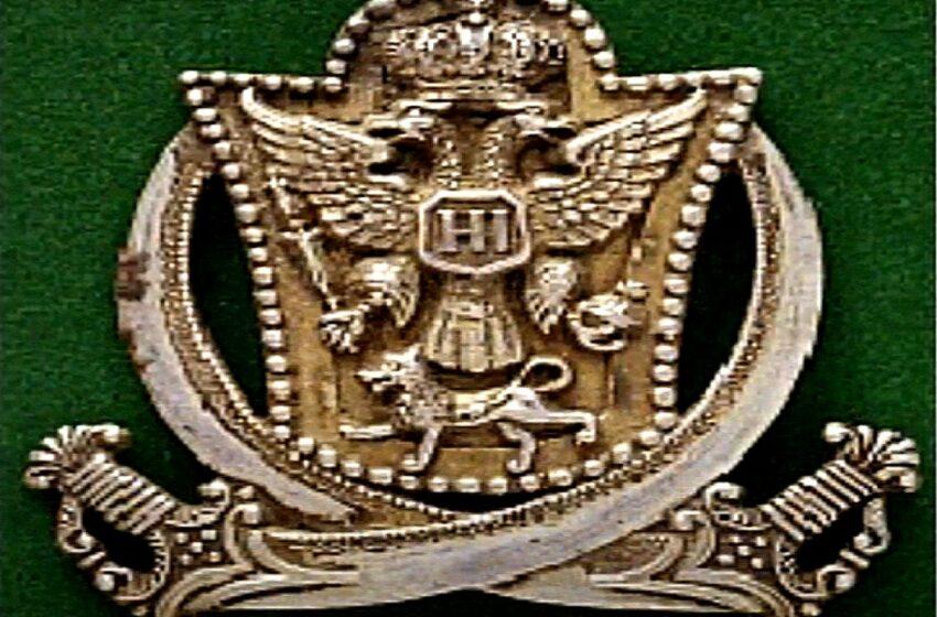 O zastavi i grbu Knjaževine Crne Gore (13)