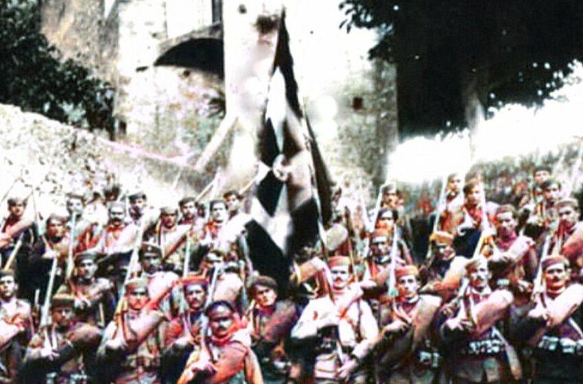 O zastavi i grbu Knjaževine Crne Gore (8)